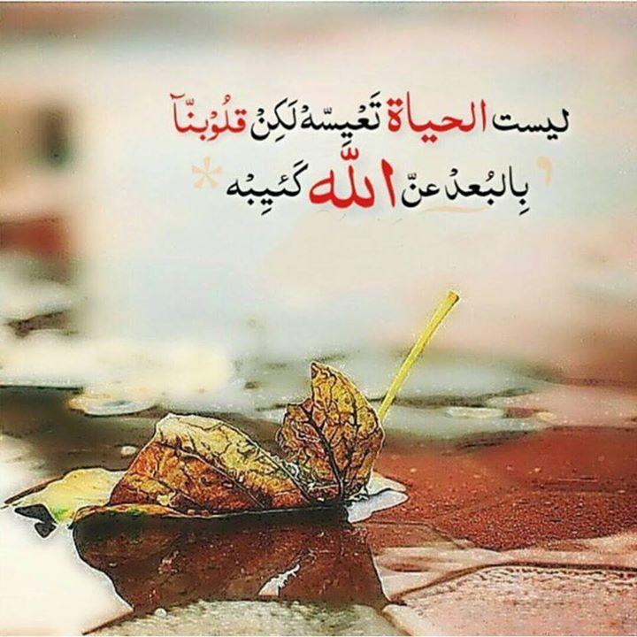 بالصور صور احلى عبارات اسلامية صور دينية , اروع كلمه دينيه unnamed file 440