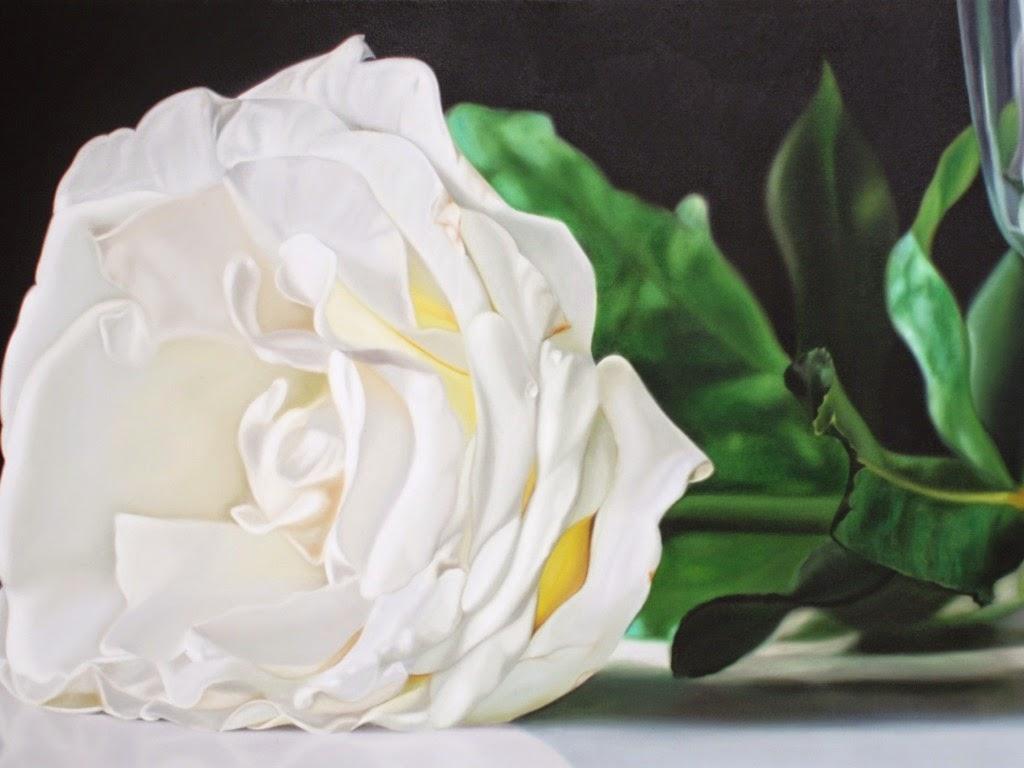 صورة صور ورود بيضاء صور ورد ابيض صور , ورد جميل