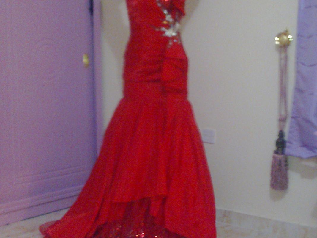بالصور بيع فساتين , فستان للبيع 1236 1