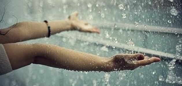 بالصور صور عن الامطار , اجمل صورة للمطر 1491 6