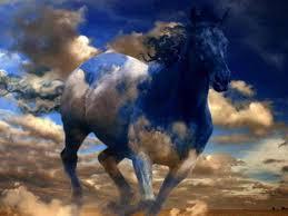 بالصور صور احصنه , اروع صور احصنة طبيعيه 1507 12