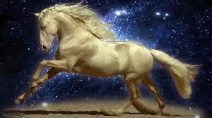 بالصور صور احصنه , اروع صور احصنة طبيعيه 1507 2