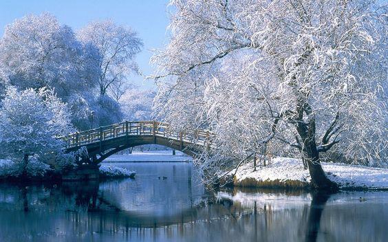 بالصور صور عن فصل الشتاء , روائع الشتاء 1638 1