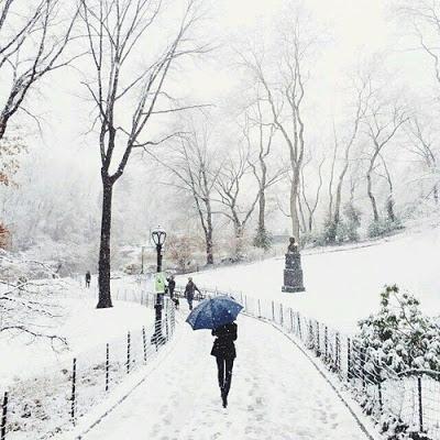 بالصور صور عن فصل الشتاء , روائع الشتاء 1638 7