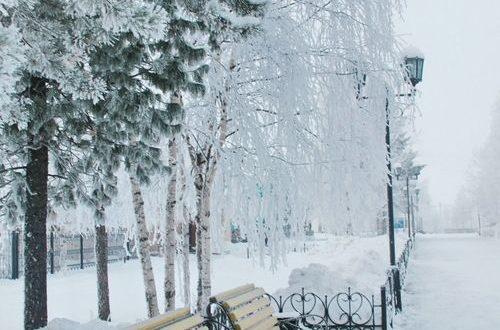 بالصور صور عن فصل الشتاء , روائع الشتاء 1638 8