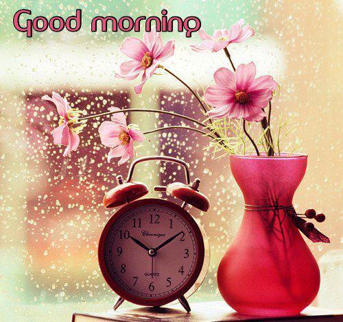 بالصور صور عن الصباح جديده , صباح جديد مختلف 1649 2