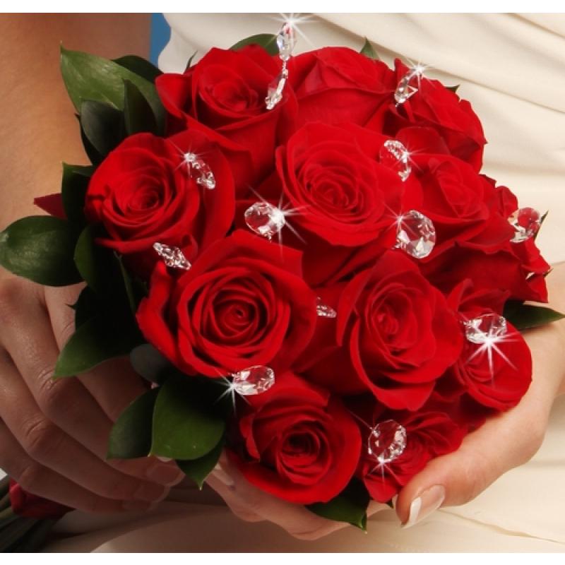 بالصور صور عن الورد , اجمل صورة لاروع زهرة 1806 5