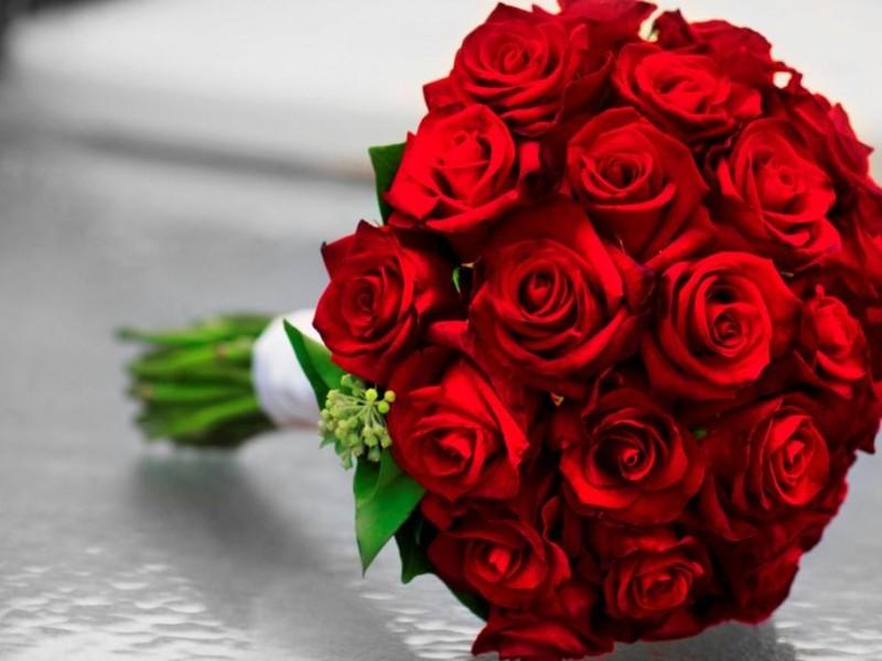 بالصور صور عن الورد , اجمل صورة لاروع زهرة 1806 7