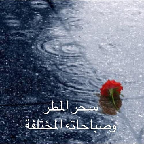 بالصور صور صباح المطر , صور عن المطر 1809 3
