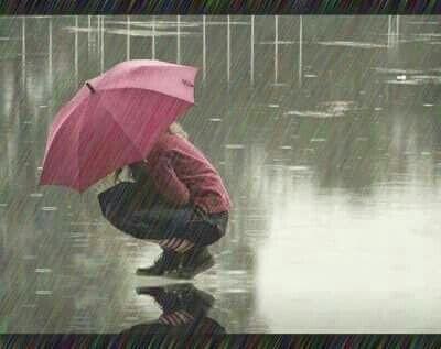 بالصور صور صباح المطر , صور عن المطر 1809 7