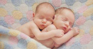 صورة صور توام , اجمل صورة لاطفال تؤائم 1822 10 310x165