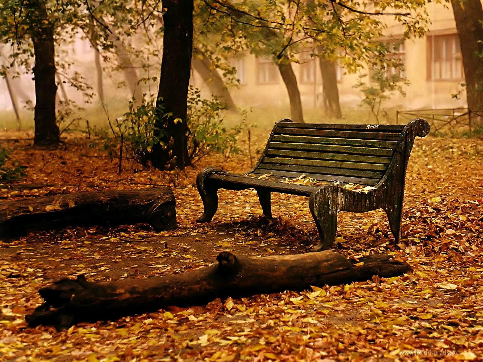 صورة صور عن الخريف , من اجمل الفصول