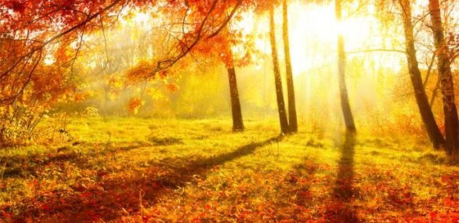 بالصور صور عن الخريف , من اجمل الفصول 1869 3