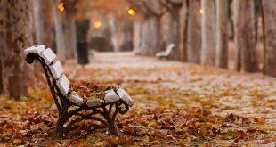 صور عن الخريف , من اجمل الفصول