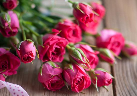 صوره صور ورود , خلفيات وردة ومناظر جميلة