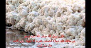 صور زبد البحر , سبحان الخالق اجمل صورة للبحر