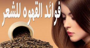 بالصور تكثيف وتطويل الشعر , سحر القهوة لشعر جذاب 2028 2 310x165