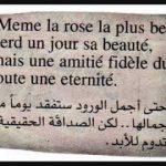 شعر بالفرنسية , ابيات شعرية باللغة الفرنسية مترجم