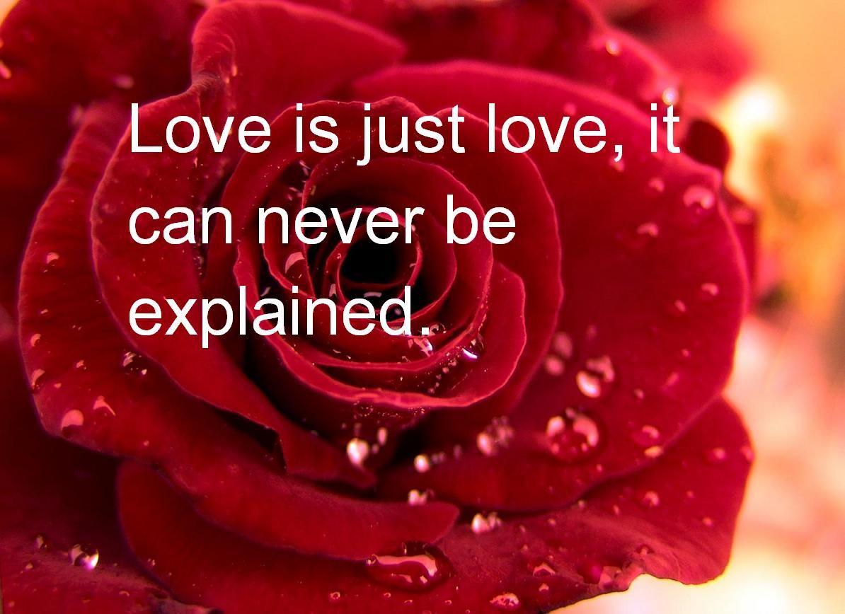 بالصور كلام رومانسي عن الحب والعشق طويل , اروع ما قيل للعشاق 3348 5