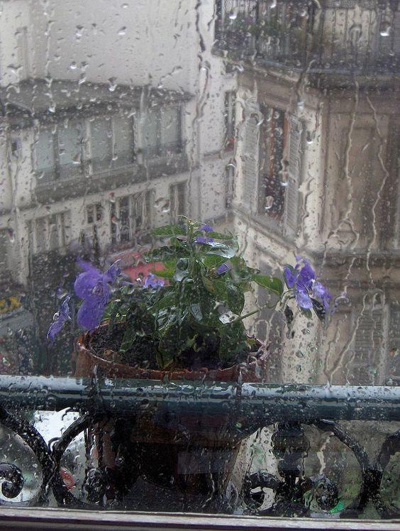 بالصور صور اروع الصور للمطر , صور مطر رائعة 3739 2