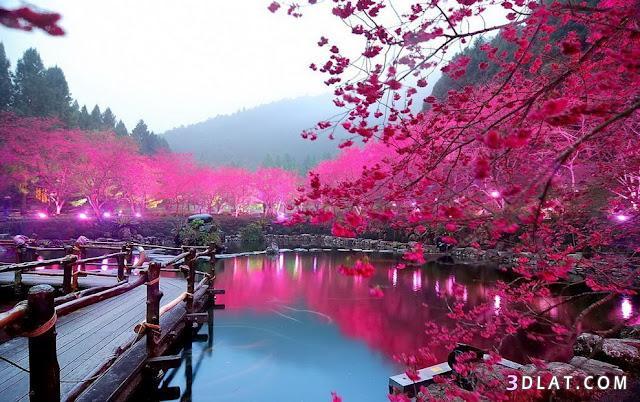 بالصور صور طبيعية , ما اجمل الطبيعة صور روعة 3747 2