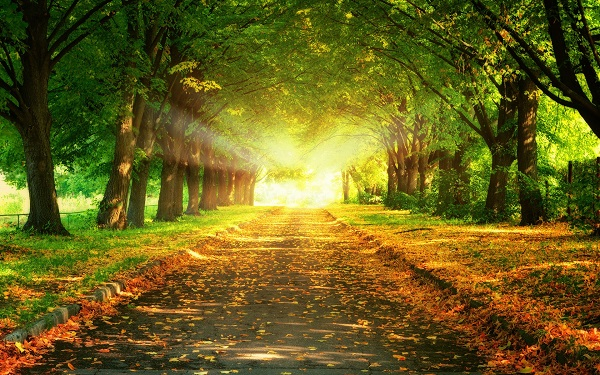 بالصور صور طبيعية , ما اجمل الطبيعة صور روعة 3747 5