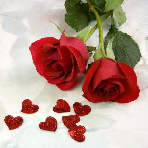 صور ورود حمراء جديدة رومانسية طبيعية لعشاق صور الورود اجمل خلفيات