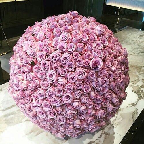 بالصور صور زهور اجمل صور زهور زهور جميلة , خلفيات رومانسية للورود حلوة 3774 6
