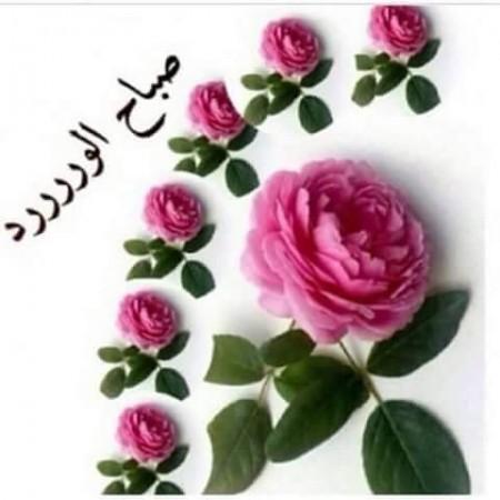 بالصور صور صباح الخير حلوة اجمل صور الصباح , كلمات صباحية علي بوستات 3775 6