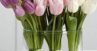 صور مزهريات ورد جميلة ارقى مزهريات الورد , خلفيات زهور طبيعية