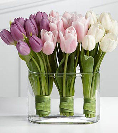 بالصور صور مزهريات ورد جميلة ارقى مزهريات الورد , خلفيات زهور طبيعية 3779