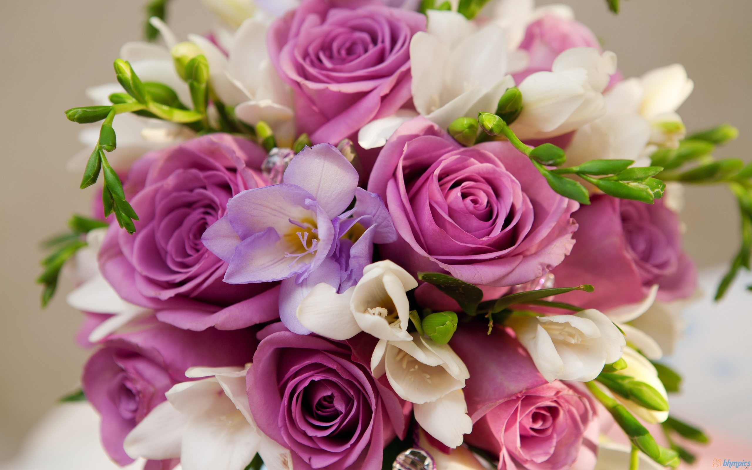 بالصور صور ورود حمراء جديدة , صور باقات ورود زهور حمراء و بيضاء جديدة و رائعة 3786 7