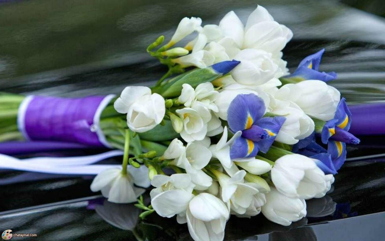 بالصور صور ورود حمراء جديدة , صور باقات ورود زهور حمراء و بيضاء جديدة و رائعة 3786 8