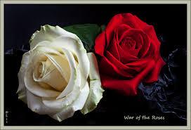 بالصور صور ورود حمراء جديدة , صور باقات ورود زهور حمراء و بيضاء جديدة و رائعة 3786