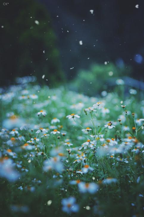 بالصور صور بنات تحت المطر صور بنات تحت الشتاء صور خلفيات بنات تحت الثلج , جمال الشتاء 3901 4