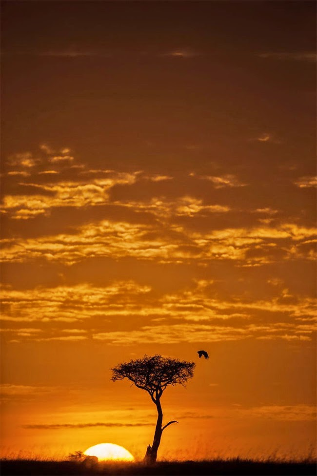 بالصور صور غروب الشمس , صور غروب الشمس خلفيات غروب الشمس 3987 2