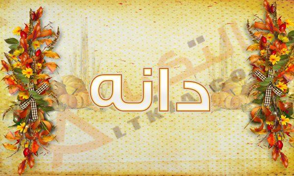 بالصور صور اسم دانه خلفيات اسم دانه صورة اسم دانه , بوستات لاجمل الاسامي 3997 5