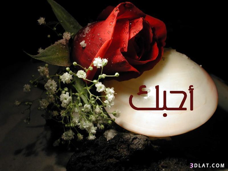 بالصور صور كلمة احبك , صور رومانسية مكتوب عليها اجمل الصور الحب والعشق 4178 1