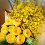 صور ورد اصفر , صور ورود صفراء جديدة