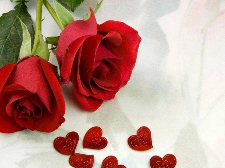 صورة صور ورود اجمل صور ورد صور باقة ورد جميلة , هدية من القلب الي عشاق الرومانسية