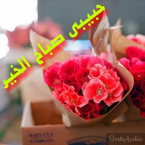 بالصور صور صباح الخير حبيبي صور صباح الخير حبيبتي , بوستات صباحية مميزة 4595 1