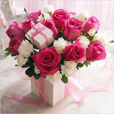 بالصور صور ورد طبيعى صور ورد حلو صور الورد طبيعى , خلفيات للزهور الطبيعية 3825 2