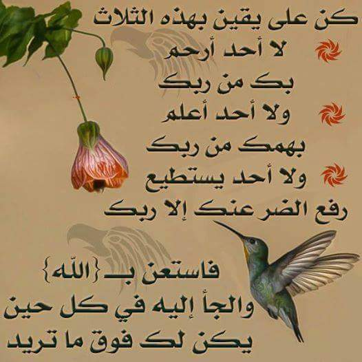 بالصور صور مقولات جميلة , كلمات حلوة علي خلفيات 3876 2