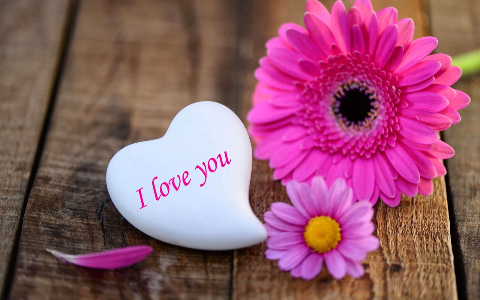 بالصور صور رومانسية صور قلوب حب صور عشاق حب صور قلوب للعشاق , خلفيات رومانسية 3878 6