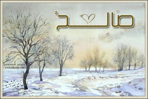 بالصور صور اسم صالح اجمل صور خلفيات اسم صالح احدث صور اسم صالح , بوستات اسامي شباب 3919 4