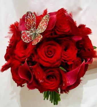 بالصور صور ورد احمر , اجمل صور ورود حمراء متحركة صور زهور و ورد باللون الاحمر 3949 1