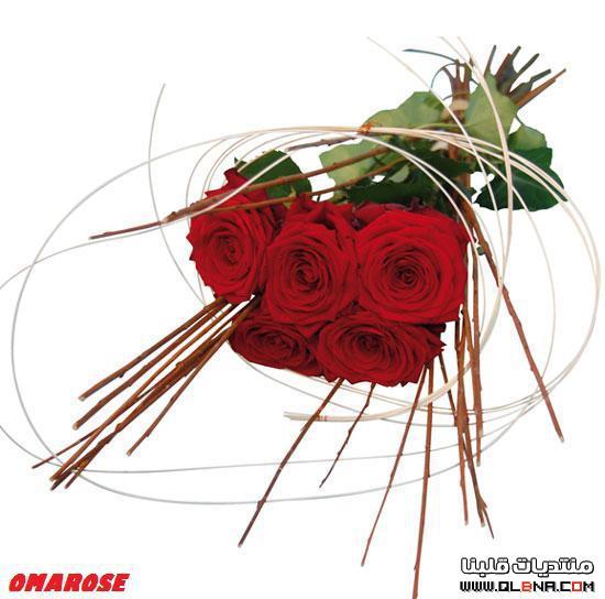 بالصور صور ورد احمر , اجمل صور ورود حمراء متحركة صور زهور و ورد باللون الاحمر 3949 4