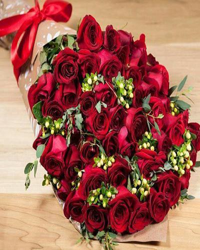بالصور صور ورد احمر , اجمل صور ورود حمراء متحركة صور زهور و ورد باللون الاحمر 3949