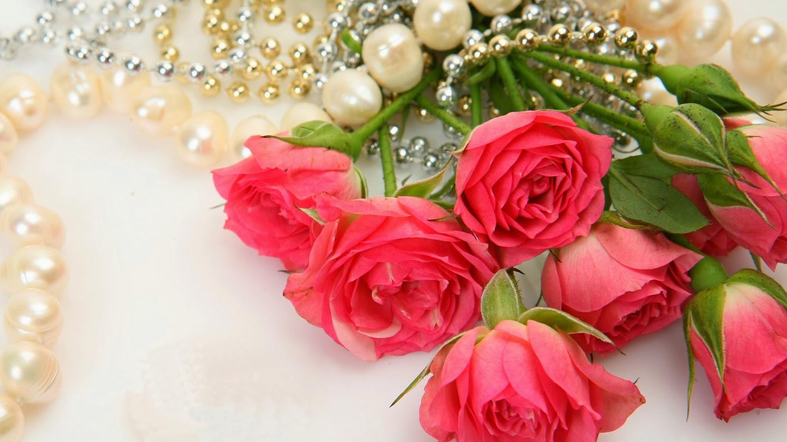 بالصور صور ورود روعه , lovely roses photos 3966 10