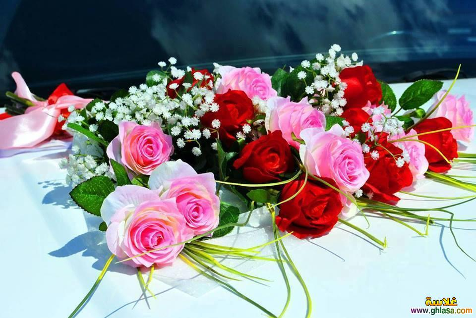 صوره صور احلى صور باقات ورود للتهنئة جميلة جديدة , اجمل صور لباقات الورد